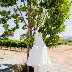 Las Positas Vineyards one shoulder wedding gown J Squared Events
