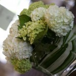 Green and white hydrangea centerpieces by Anne Mendenhall Flowers