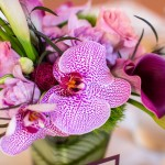 0353 lavendar plum lily and calla lily centerpiece by Gingerleaf Floral for same sex lesbian wedding at Elliston Vineyards by planner J Squared Events Lady of Light Photography